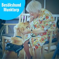 19/4 Besökshund Munktorp/Köping